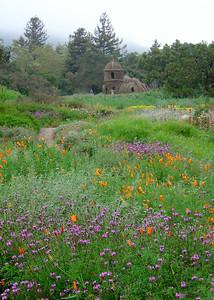 Botanic Garden in the spring http://www.sbbg.org/