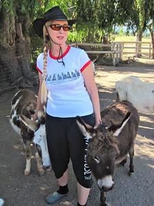 Linda & her donkeys www.seeinspotsfarm.com