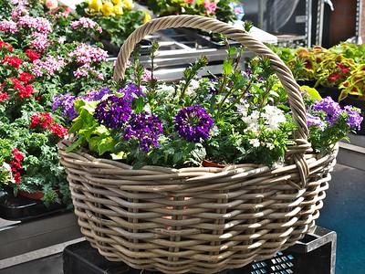 Foire aux plantes et décorations de jardin, au domaine de la mine à Blégny - 14 mai 2015
