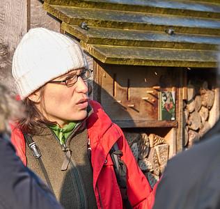 Julie guide le groupe - Promenade nature à Wezembek-Oppem - 14 janvier 2018