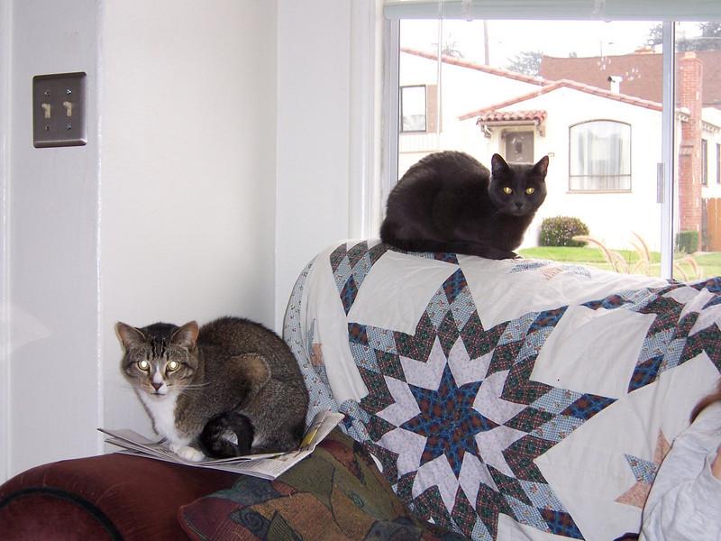 10/04 Simon and Siggy