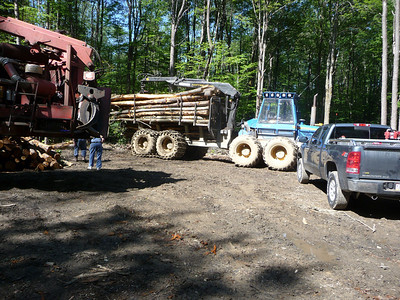 2011-07-30 seeing how logging is done in Allegheny National Forest