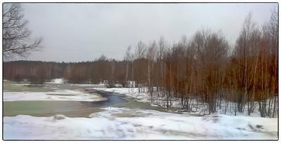 Landscape in the Pripyet Marshes region north of Kyiv, Ukraine.
