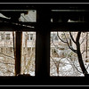 Inside the 30-kilometer Chernobyl Exclusion Zone, Pripyat, Ukraine.