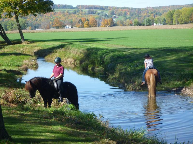 Steve and Hrokur - Cherrie and Kraftur cool off in Sugar Creek
