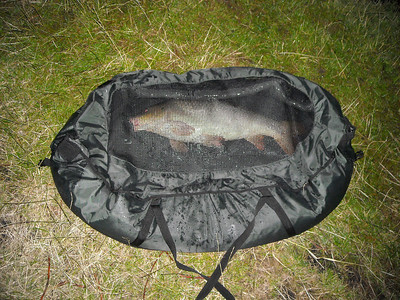 2008-07-13 Nachtvissen: Gerco, Lennart, Alwin en Jeroen