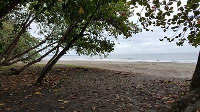 Hotel Banana Azul Beach Walk