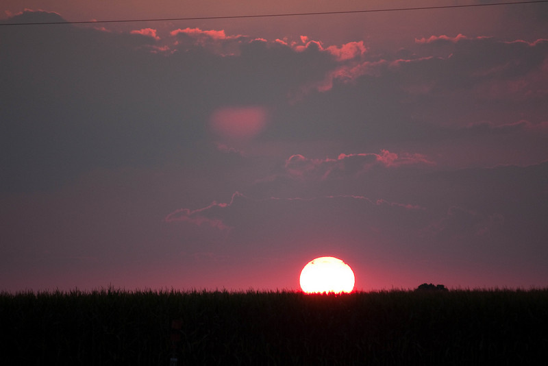 Sunset over the corn fields, late summer