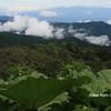 Cerro de la Muerte Vista