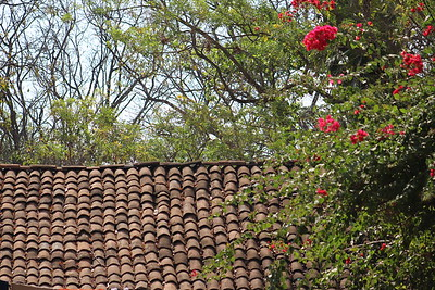 Montibelli Clay Tile Roof