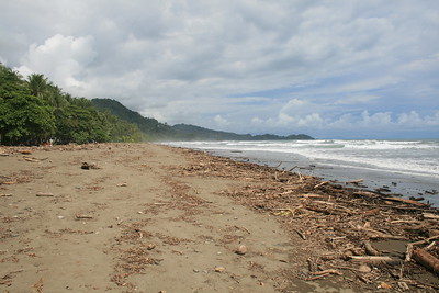 Playa Dominica