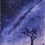 """Desert Nights"""