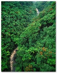 Nanue Falls