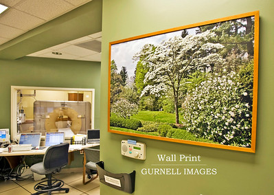 Wall Prints are available in many sizes.