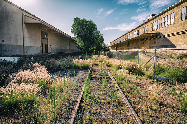 One hundred yards from this area, a modern rail line offers commuter train and Amtrak service to Southern Californians. On base, two rail lines split supply chain buildings. Trees have grown through the tracks, offering some of the most stark images from a once-mighty military stronghold.