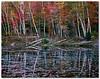 Adirondack Pond