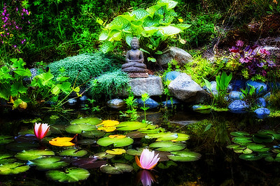 Buddha Pond Two