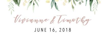 Vivianne & Timothy 6.16.18