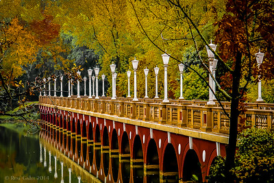 Autumn Bridge #2