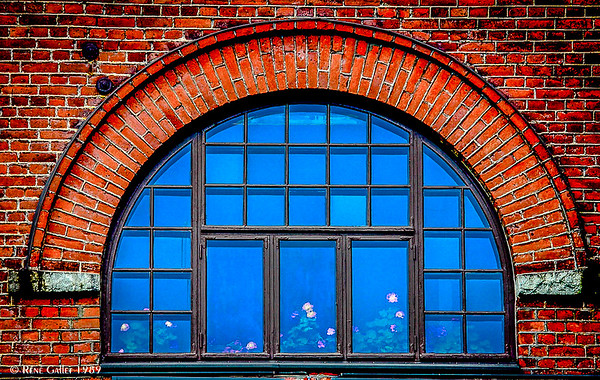 Greenhouse Windows  31