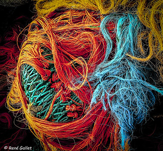 Tangled Nets of Color 1