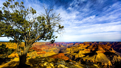 Grand Canyon Magnificence