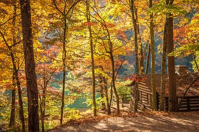 Autumn Retreat.