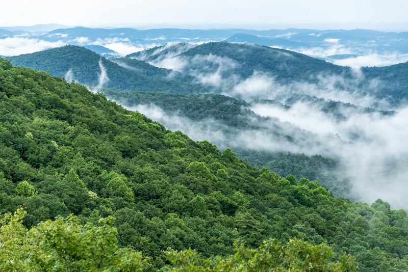 Blue Ridge Mountains Mist.