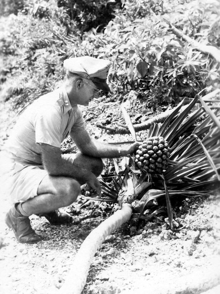 Examining Guam Flora