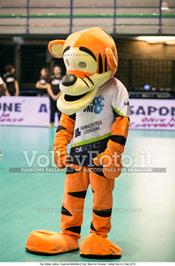 Mascotte, Top Volley Latina