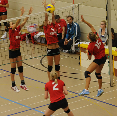 Volleyball 2010/2011