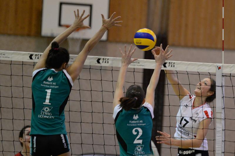 NLA 2013/2014: TSV Düdingen - VC Kanti 1:3, 14.12.2013