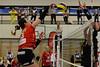 NLA 2016/2017: Volley Top Luzern - VC Kanti 3:2, 26.02.2017 © Reinhard Standke