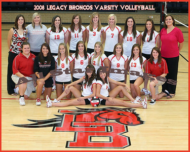 2008 Mansfield Legacy Varsity Volleyball Team