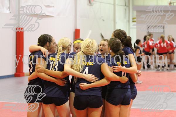 2010 Buckeye Volleyball Tournament (Columbus)