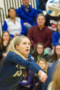 Record-Eagle/Brett A. Sommers Traverse City St. Francis' Kaylin Poole (14) digs a shot during Tuesday's Division 3 quarterfinal volleyball match against Beal City at Cadillac High School. St. Francis won 3-1.
