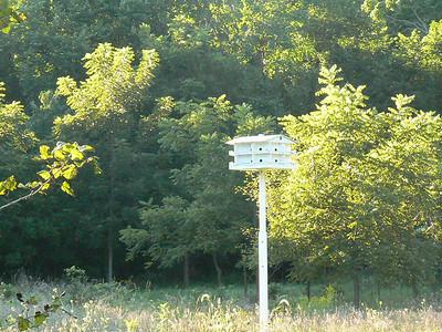 2007-8-25 Moenland218