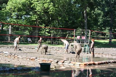 20090712 Mud Volleyball - West Chicago 002