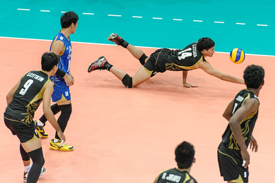 Diving dig by Somkane (Thailand)