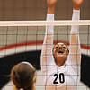 Elena Perri (20) jumps up to block a spike from a Tennessee player during a volleyball game against Tennessee on Friday, Oct. 4th 2013 in Athens, Ga. (Photo By Sean Taylor)