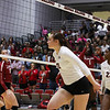 Georgia's Maddie Lobenstein (13) during the Bulldogs' match with Alabama at the Ramsey Center in Athens, Ga., on Friday, Sept. 30, 2016. (Photo by Cory A. Cole)