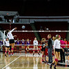Members of the Georgia volleyball team during the Bulldogs' match with LSU at Stegeman Coliseum in Athens, Ga., on Sunday, Oct. 9, 2016. (Photo by John Paul Van Wert)