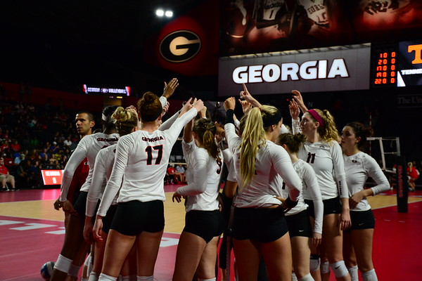 The UGA women's volleyball team prepares for a match in the newly renovated Stegeman Coliseum. (Photo by Caitlyn Tam / Georgia Sports Communication)