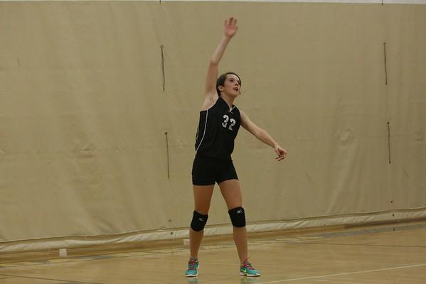 Mesa Volleyball
