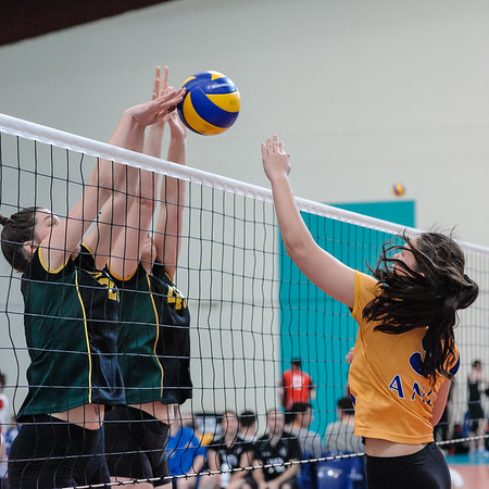 Capital Volleyball League