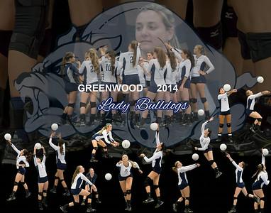 Greenwood Volleyball 2014