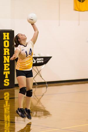 Hackett Volleyball 2015