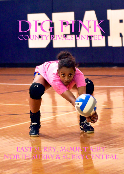 Dig Pink: ESurry, MAiry, NSurry and Surry Central