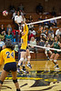 Mt Tabor Spartans vs W Forsyth Titans JV Volleyball<br /> Tuesday, October 11, 2011 at Mt Tabor High School<br /> Winston-Salem, North Carolina<br /> (file 174217_BV0H7846_1D4)