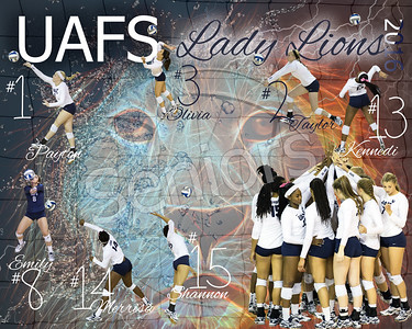 UAFS Volleyball 2016